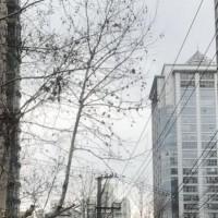 上海企业IT建设推进思路高级实践培训班