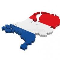 初级荷兰语中外教精品课程