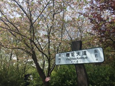 北京户口的好处有哪些