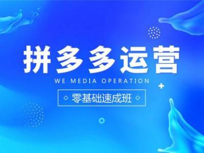 上海拼多多运营培训、站行业制高点掌握电商新玩法