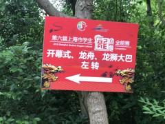 2020积分落户上海条件及材料解读政策汇总