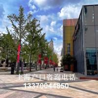 2021年留学落户上海生上海落户指南!预计落沪薪水提高至7300元!
