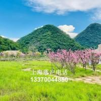 【归国答疑】133-7004-4850留学落户上海生上海落户全攻略