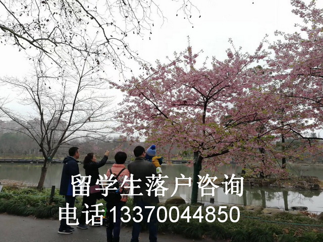 关于上海入户条件有哪些?满足什么条件才能入沪籍?